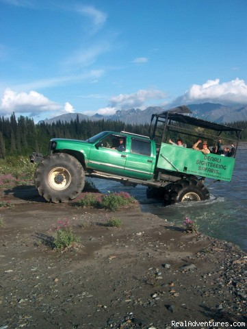 - Denali Sightseeing Safaris LLC