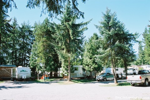 RV Park - Wild Duck Motel & RV Park