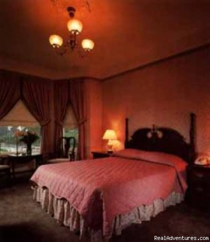 Deluxe Queen - Stanyan Park Hotel