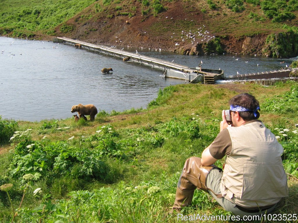 Bear Viewing | Image #11/11 | Alaska's Kodiak Wilderness Sport Fishing