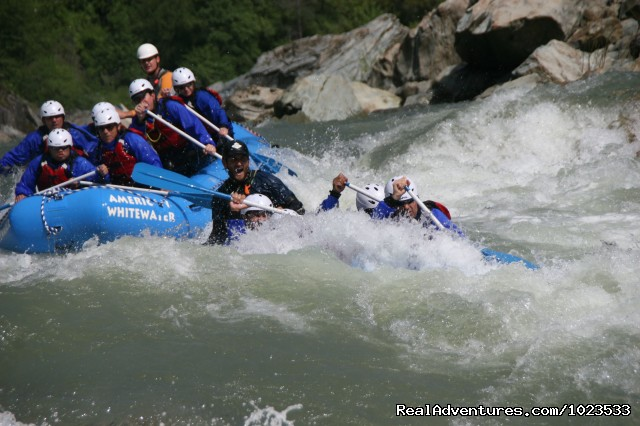 North Fork American River - American Whitewater Expeditions Rafting Adventures