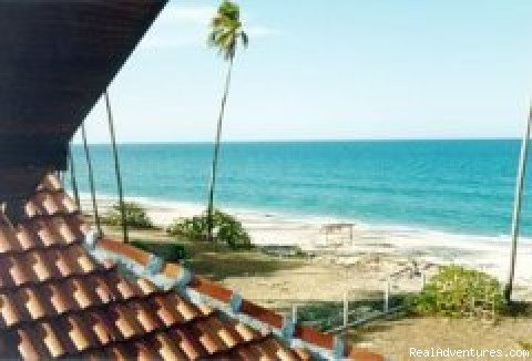 Beautiful beach chalet located on one of Malaysia's famous turtle beaches. Designed in traditional Malay hardwood but with all the western style comforts. 3 bedrooms (all a-c.)