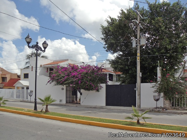 The downstairs living area - Cozumel 4 bd with 2 level pool, garden, hammocks