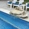 Cozumel 4 bd with 2 level pool, garden, hammocks