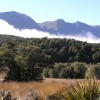 Bush & Beyond guided conservation walks