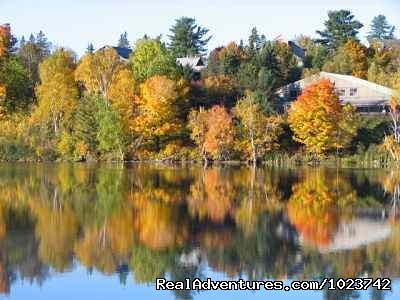 Fall colours | Image #18/18 | Fairybay Guest House