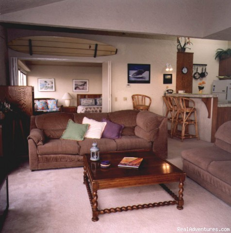 Photo #3 - Endless Summer Vacation Rental Duplex a
