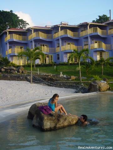 Image #8 of 24 - Caribbean adventure starts at True Blue Bay Resort