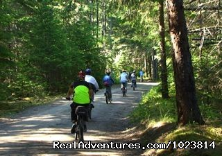 Image #15 of 23 - Bicycle tours in the last frontier
