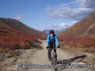 Image #18 of 23 - Bicycle tours in the last frontier