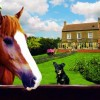 Bowers Hill Farm B&B Worcs, United Kingdom Bed & Breakfasts