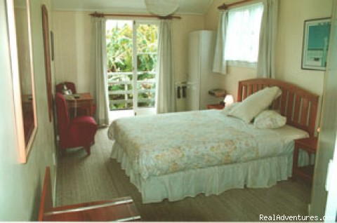 Bedroom - Bed&Breakfast Accommodation in Auckland