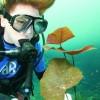 Broadreach Summer Adventures for Teens