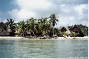 Green Parrot Beach Houses & Resort Placencia, Belize Hotels & Resorts