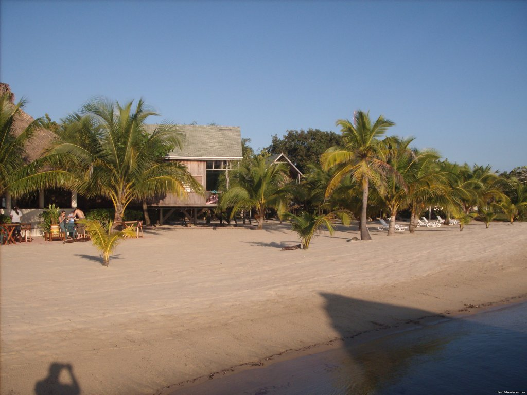 Cabanas are right on the water | Image #16/24 | Green Parrot Beach Houses & Resort
