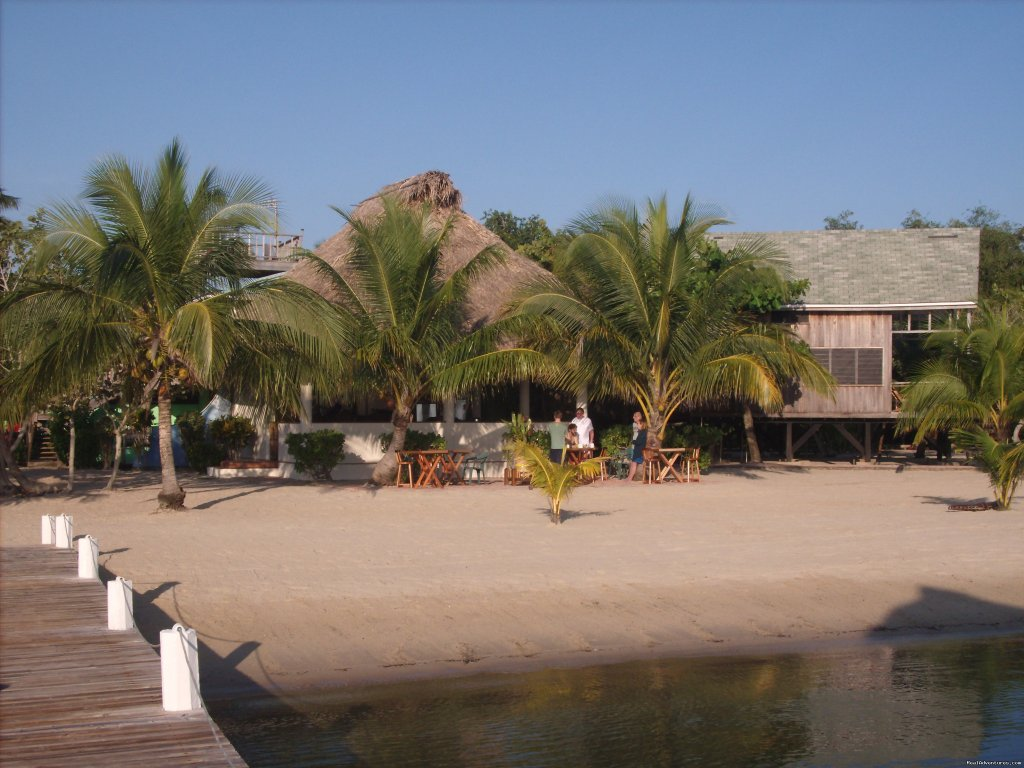 Rated the Best Beach in Belize | Image #24/24 | Green Parrot Beach Houses & Resort