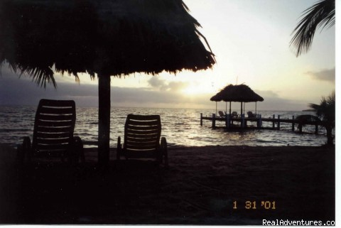 Caribbean Sunrise on Green Parrot Beach - Green Parrot Beach Houses & Resort