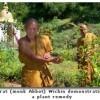 Jaithai Adventures Nathon,  Koh Samui, Thailand Folk Medicine