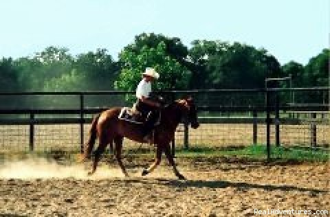 Arena for lessons (#4 of 7) - Horsebacking Riding at the Running-R  Ranch