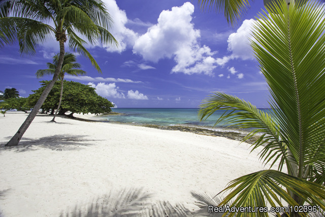Sunset Cove Oceanfront - 1-3 BR Condos, Seven Mile Beach, Grand Cayman