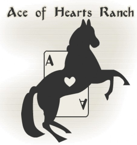 Photo #1 - Horse Ranch for Riding Trails, Boarding & Getaways