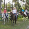 Horse Ranch for Riding Trails, Boarding & Getaways Horseback Riding Cocoa, United States