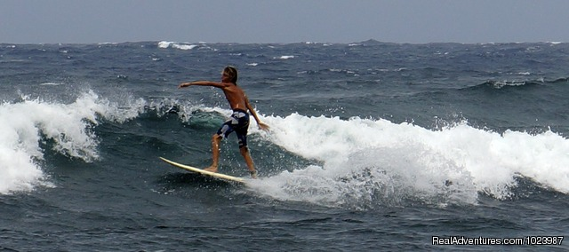 Surfing, wave after wave... - Limestone Holiday Resort with pool + private beach