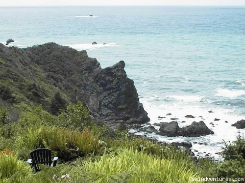 Abalone Cove: View