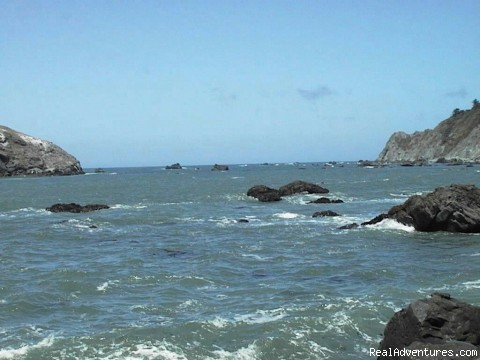 View - Abalone Cove