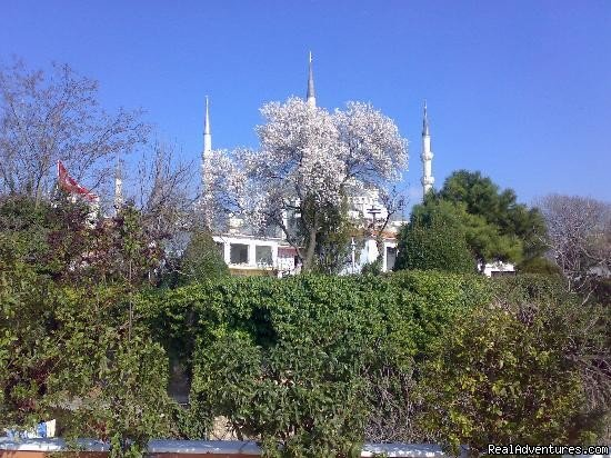 Blue Mosque viewed from breakfast area | Image #3/19 | Hotel Tashkonak Istanbul