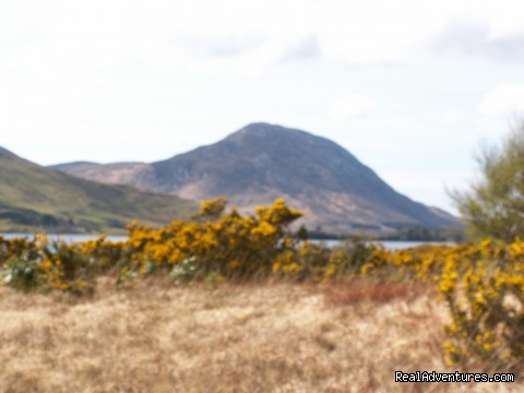 - Experience the West of Ireland - Cycling & Walking