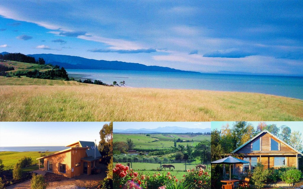 The views & the cottages | Image #1/11 | Nelson, New Zealand | Vacation Rentals | Nelson Coastal Barnstay