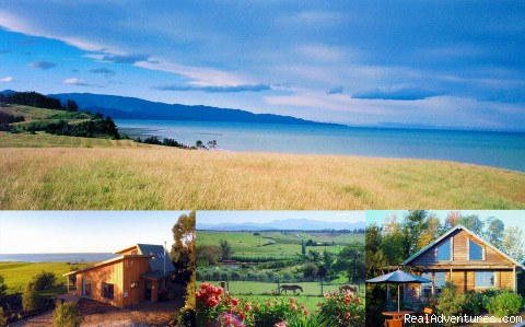 Nelson Coastal Barnstay: The views & the cottages