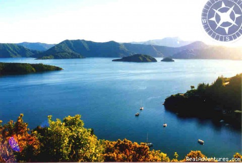 Scenery of the Marlborough Sounds - Yacht and launch charter in the Marlborough Sounds