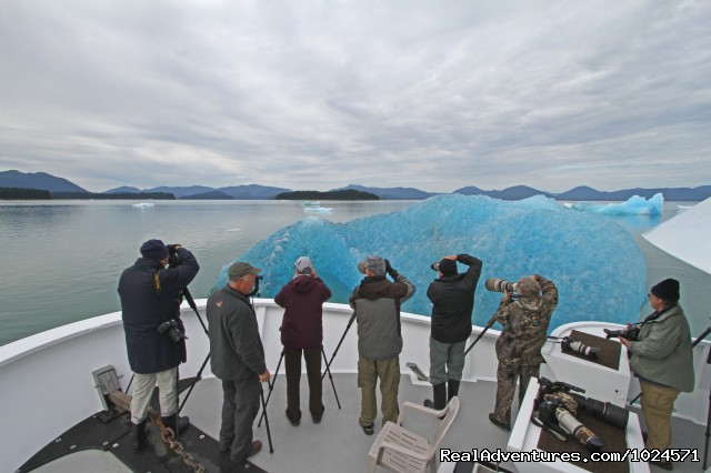 Alaska photography at it's finest on board the Northern Song - Alaska Sea Adventures YachtAlaska