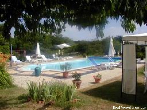 chateau de Vendanger Bed and breakfast: the swimming pool