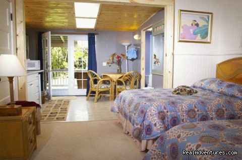 Alpine Suite (#5 of 9) - Aloha Junction B&B