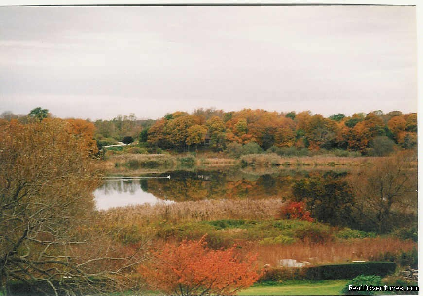 Murray House Pond View changing Fall colors. | Image #6/21 | Murray House Bed & Breakfast: It's a Special Place