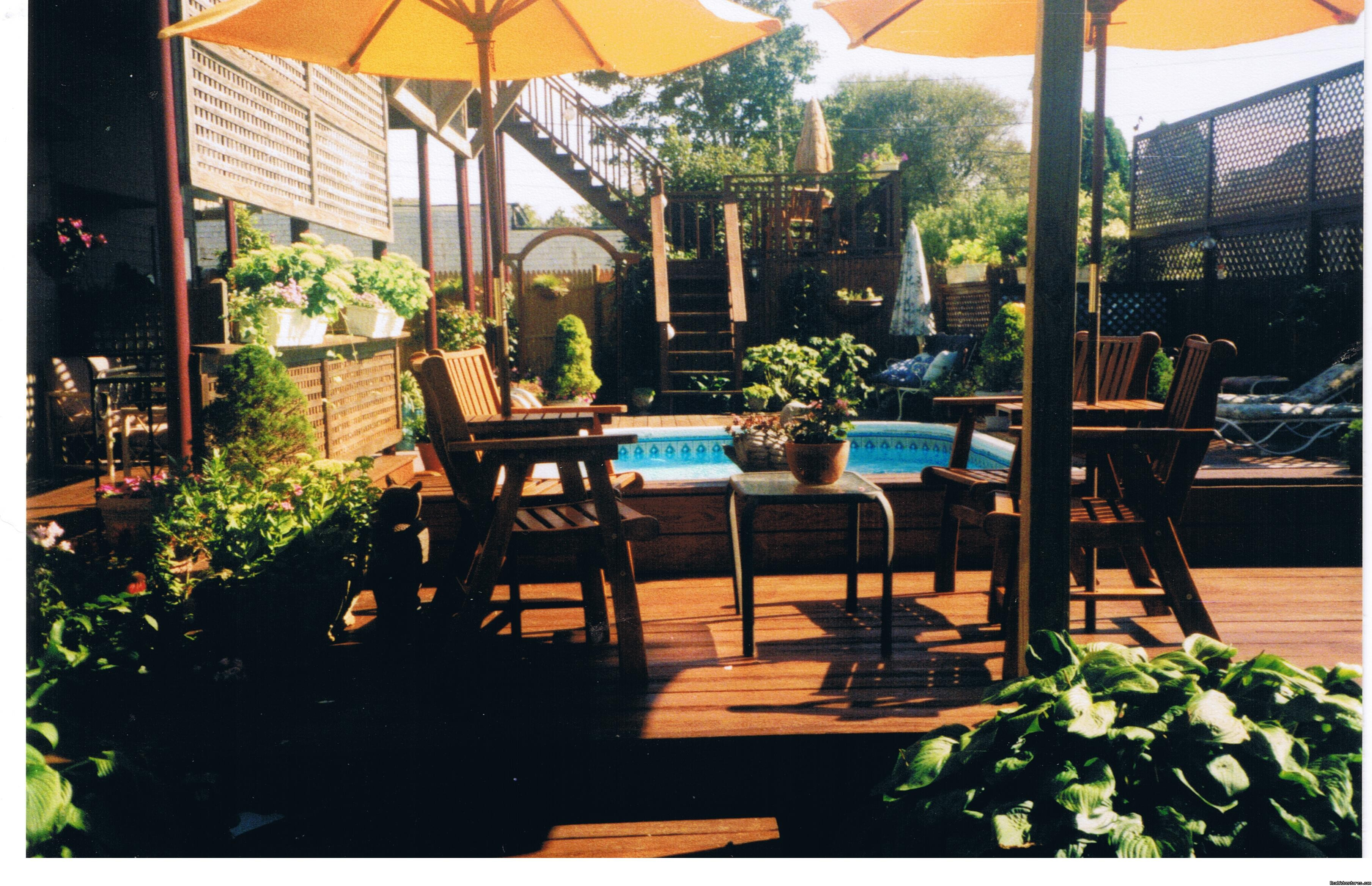 Murray House Poolside Deck | Image #3/21 | Murray House Bed & Breakfast: It's a Special Place