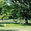 Dog & jogging park