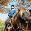 Guided horseback riding on site