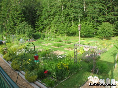 The organic garden - Mulvehill Creek Wilderness Inn and Wedding Chapel