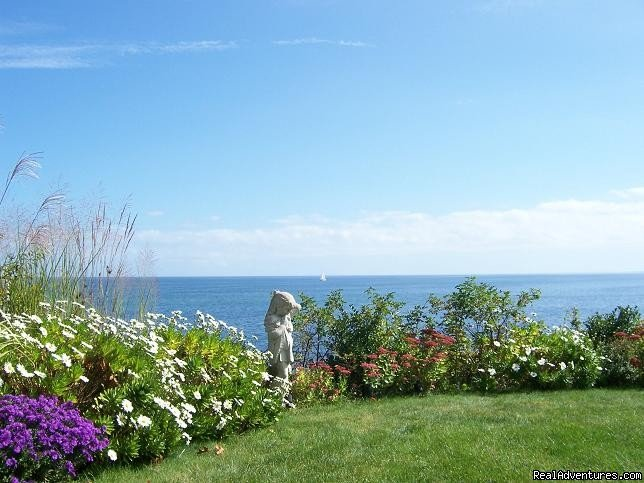 Beach House Garden by the sea | Image #5/13 | A Beach House Oceanfront Bed & Breakfast