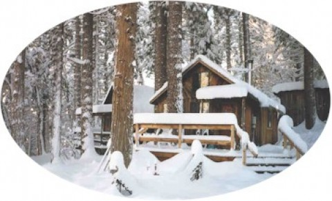 Larkspur Cabin in the Snow - Sunset Inn- Yosemite Guest Cabins
