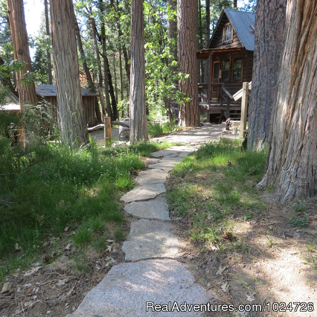 Pathway to Sugar Pine Cabin (#8 of 13) - Sunset Inn- Yosemite Guest Cabins
