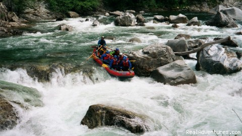 Rogue River Rafting | Oregon Family Rafting with OARS