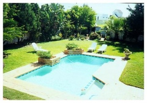Swimming pool and private garden  -  Avocet CAPE TOWN Villa