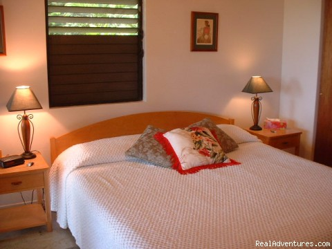 Comfortable Master Bedroom with King Bed | Image #4/6 | Bluff-front Beach/View House with Sunken Spa