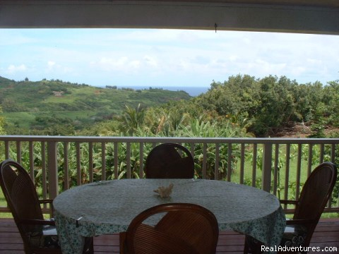 Lanai Dining with a View - Bluff-front Beach/View House with Sunken Spa