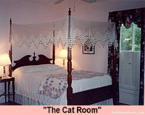 The Cat Room - A B&B Inn at Keezletown Road
